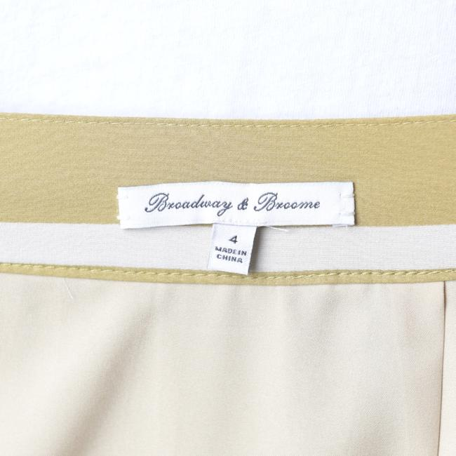 Madewell Olive/Ivory Silk Pleated Skirt Size 4 (S, 27) Madewell Olive/Ivory Silk Pleated Skirt Size 4 (S, 27) Image 5