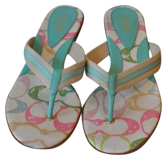 Coach Multi with Teal Sandals