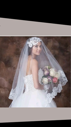 Preload https://item1.tradesy.com/images/other-new-2-layer-lace-edge-wedding-veil-2816980-0-1.jpg?width=440&height=440