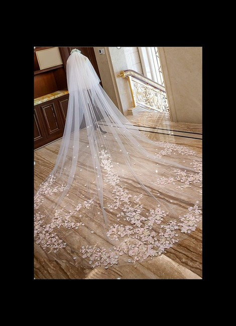 Item - Blush Long Two-tier Lace Applique Edge Cathedral with Lace Bridal Veil