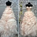 Lazaro Blush Organza Lace Silk Tulle Ballgown Custom Altered Formal Wedding Dress Size 16 (XL, Plus 0x) Lazaro Blush Organza Lace Silk Tulle Ballgown Custom Altered Formal Wedding Dress Size 16 (XL, Plus 0x) Image 1
