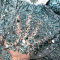 basix black label Turquoise Sequined Tiered Tulle Gown Long Formal Dress Size 6 (S) basix black label Turquoise Sequined Tiered Tulle Gown Long Formal Dress Size 6 (S) Image 7