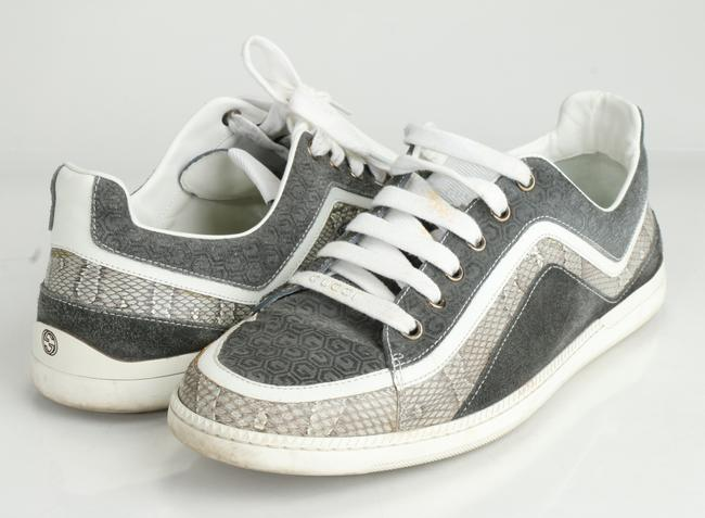 Item - Gray Python Low-top Sneakers Shoes
