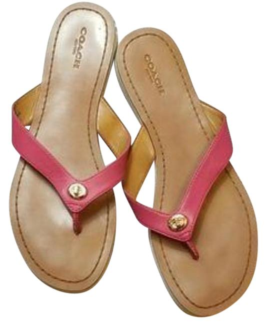 Item - Pink Shelly Sandals Size US 8.5 Regular (M, B)