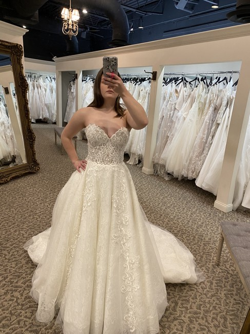 Calla Blanche Ivory/Nude Lace 18120 Traditional Wedding Dress Size 16 (XL, Plus 0x) Calla Blanche Ivory/Nude Lace 18120 Traditional Wedding Dress Size 16 (XL, Plus 0x) Image 2