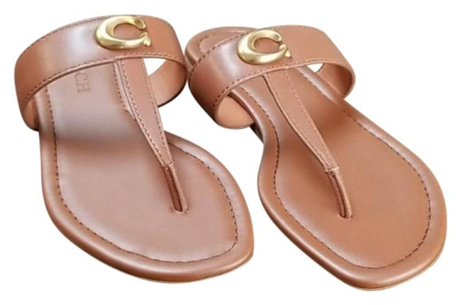 Item - Brown Jessie Thong Sandal with Signature Buckle Flats Size US 6 Regular (M, B)