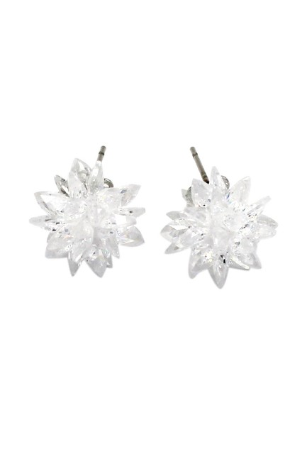 Item - White Shiny Ice Crystals Earrings