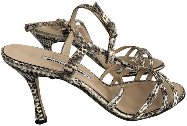 Item - Multi-color Snakeskin Covered Strappy Leather Sandals/Heels Sandals Size EU 39 (Approx. US 9) Regular (M, B)
