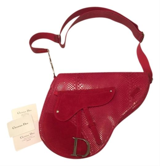 Preload https://img-static.tradesy.com/item/2912722/dior-rare-christian-saddle-red-phyton-and-red-suede-suedephyton-cross-body-bag-0-0-540-540.jpg