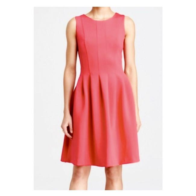 Item - Pink Scuba Seamed Knit Fit & Flare Mid-length Work/Office Dress Size 10 (M)