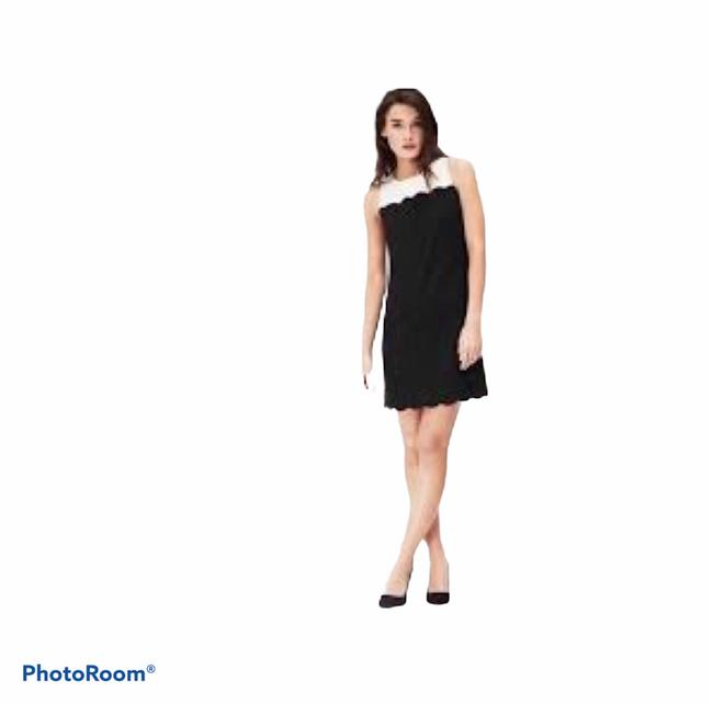 Item - Black and White Scalloped Colorblock Mid-length Work/Office Dress Size 6 (S)