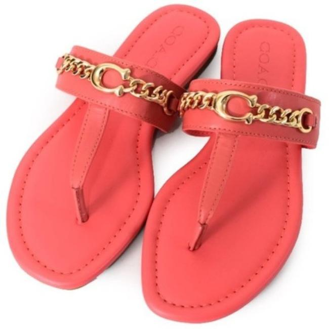 Item - Coral Jaclyn Leather Chain Sandals Size US 5 Regular (M, B)