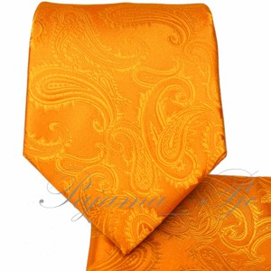 Brand Q New Men's Orange Paisley Design Self Tie Necktie And Handkerchief Set