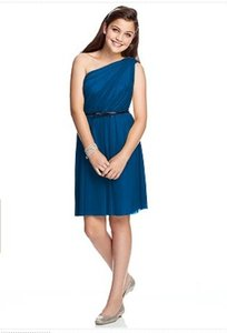 Cerulean Junior Bridesmaid Jr 524 Dress