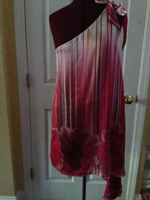Calypso Silky Feminine Eclectic Chic Dress