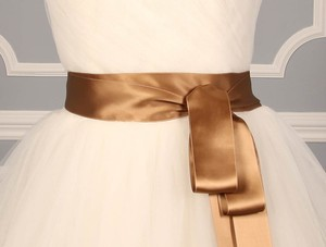 Sable Brown Ribbon Sash 2