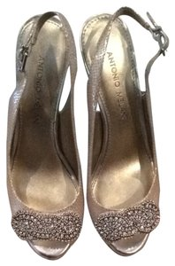 Antonio Melani Putty/ Silver Pumps
