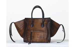 Céline Shaded Phantom Tote in Brown and Black