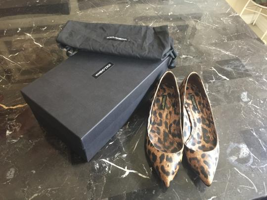 Dolce&Gabbana Brown and Black Pumps