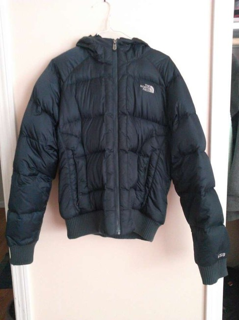 Preload https://item2.tradesy.com/images/the-north-face-dark-blue-puffyski-coat-size-12-l-329391-0-0.jpg?width=400&height=650