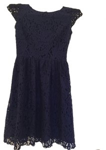 Gianni Bini short dress Navy Blue Lace Baby-doll on Tradesy