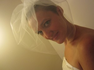 Ivory Tulle Birdcage Veil