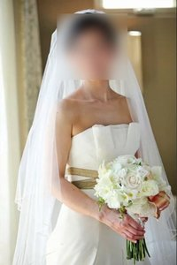 Vera Wang 11028gbt Wedding Dress