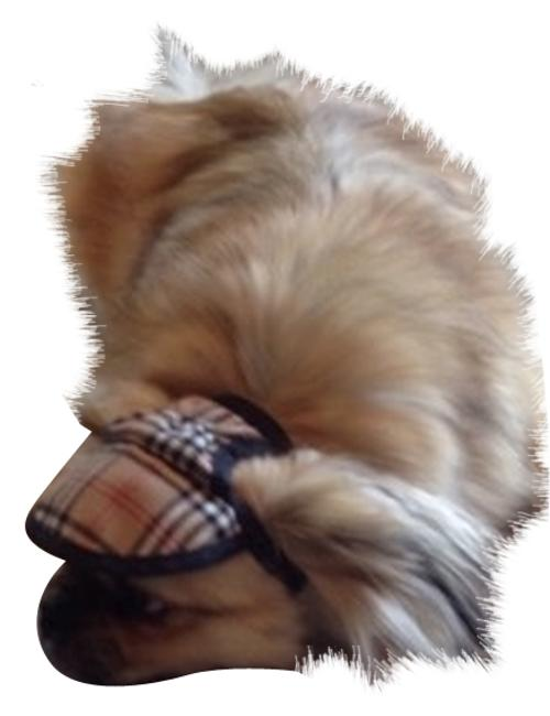 Burberry-like Doggie Visor Burberry-like Doggie Visor Image 1