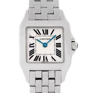 Cartier Cartier Santos Demoiselle Steel Ladies Watch W25064z5