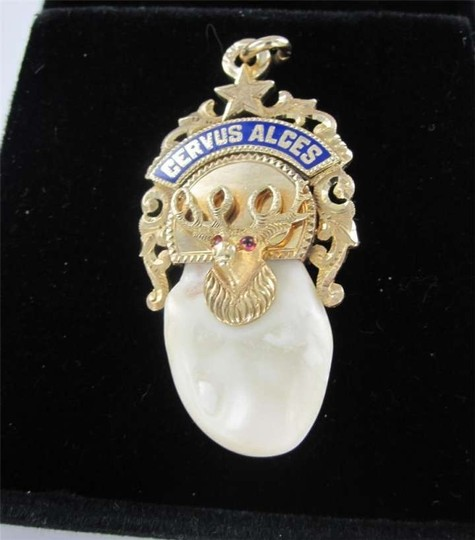 Other 14KT YELLOW GOLD PENDANT ELK TOOTH MOOSE CERVUS ALCE FRATERNITY CLUB WATCH STAR