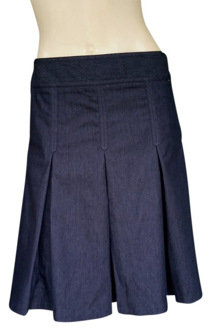 Preload https://item3.tradesy.com/images/ann-taylor-loft-gray-charcoal-pleated-4p-knee-length-skirt-size-petite-4-s-3627607-0-0.jpg?width=400&height=650