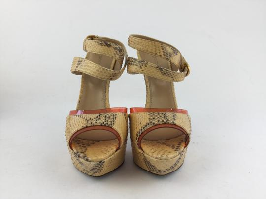 Sergio Rossi Multicolor Sandals
