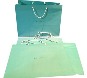 Tiffany & Co. Tiffany & Co. Gift Bag (4)