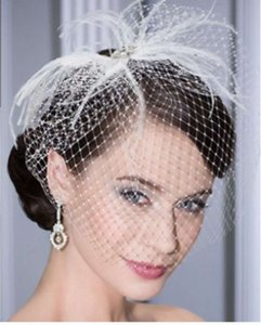 Bel Aire Bridal Ivory Birdcage Flirty Feathered Bridal Veil