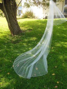 Other 2 Tier Cathedral Blusher Veil With Silver Pencil Edge And Silver Seed Beads