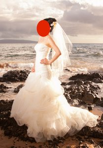 Vera Wang Vw351166 Wedding Dress