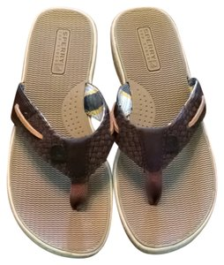 a52d9cfafda8 Sperry Brown Sandals. Sperry Brown Nwot Leather Sandals Size US 8.5 Regular  (M ...