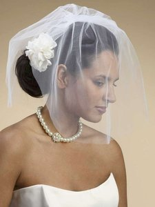 Mariell Mariell 2-layer Tulle Birdcage Bridal Veil
