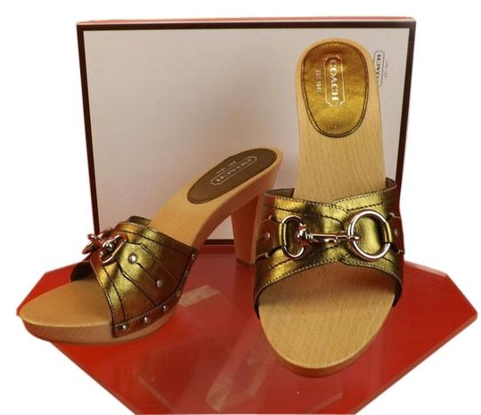 Preload https://item1.tradesy.com/images/coach-gold-leather-joslyn-silver-lock-detail-wooden-heels-italy-mulesslides-size-us-95-regular-m-b-3977635-0-0.jpg?width=440&height=440
