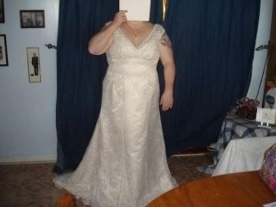 David 39 s bridal champagne and ivory lace over satin empire for Plus size trumpet wedding dress with sleeves