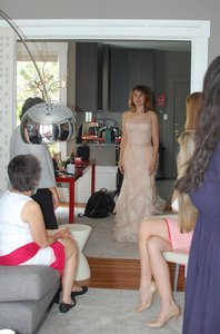 Vera Wang Pale Blush French Silk and Tulle Farrah Feminine Wedding Dress Size 4 (S)