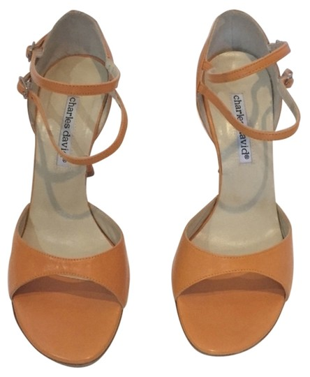 Preload https://item3.tradesy.com/images/charles-david-orange-strappy-sandals-size-us-75-4105087-0-0.jpg?width=440&height=440