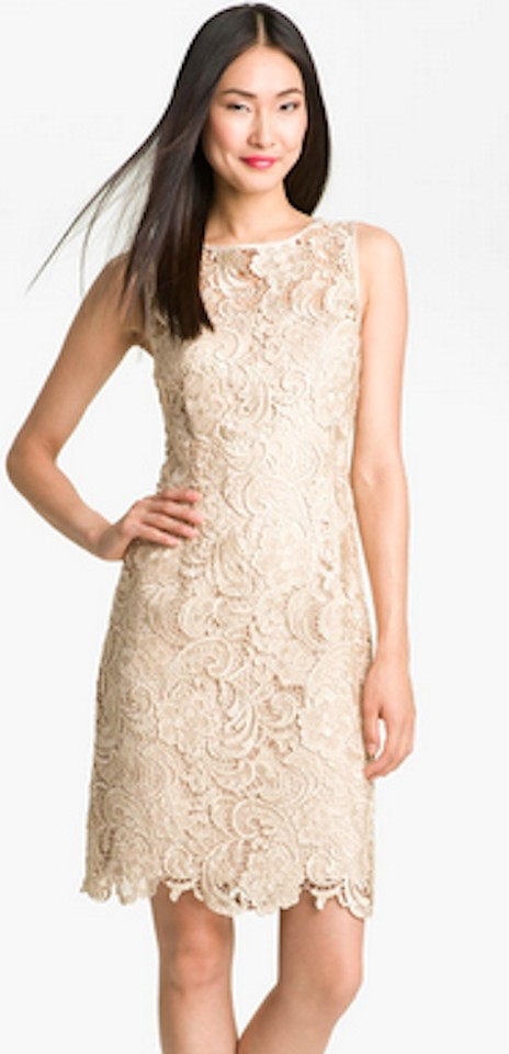 Adrianna Papell Champagne Lace Sheath Formal Bridesmaid/Mob Dress ...