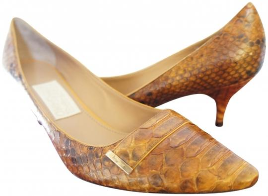 Salvatore Ferragamo Python Leather Brown Pumps