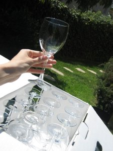 Clear Reception Glass Stemware- Flutes and Wine Glasses