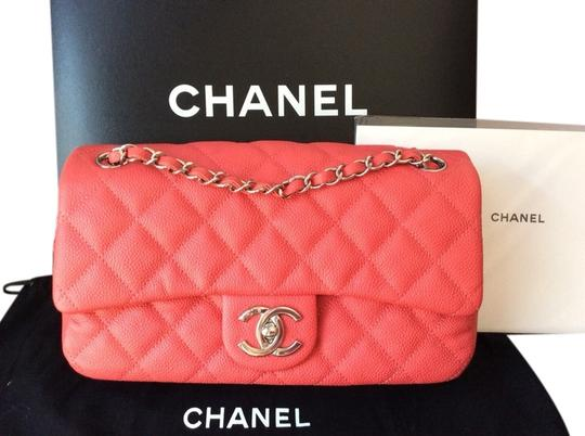 Preload https://img-static.tradesy.com/item/4257007/chanel-shoulder-bag-coral-pink-4257007-0-0-540-540.jpg