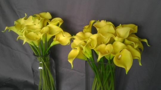 Yellow 40 Calla Lilies Ceremony Decoration