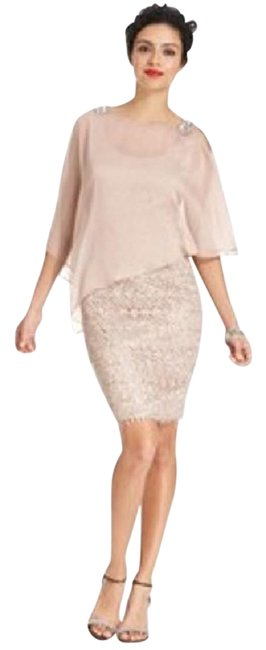 Preload https://img-static.tradesy.com/item/4378435/adrianna-papell-rose-lace-capelet-sheath-short-cocktail-dress-size-10-m-0-2-650-650.jpg