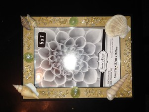 Beach Sea Shell Frame