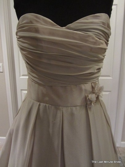 Alvina Valenta Other Chiffon Av9081 Feminine Wedding Dress Size 6 (S)